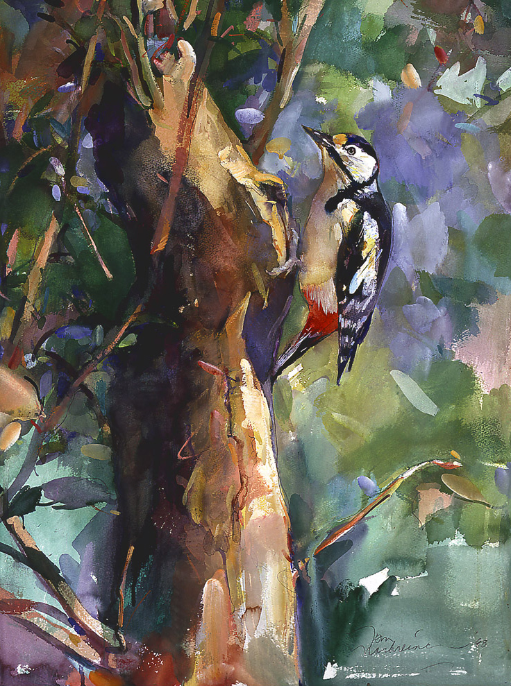 Woodpecker, Painting by Tom Nachreiner